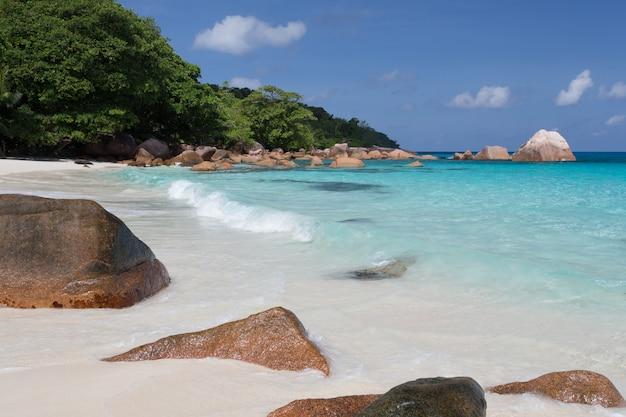 청록색 물과 큰 돌과 많은 녹색 식물이있는 세이셸