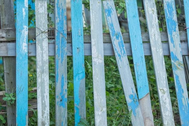 Shabby blue vintage wood background. broken old fence with grass