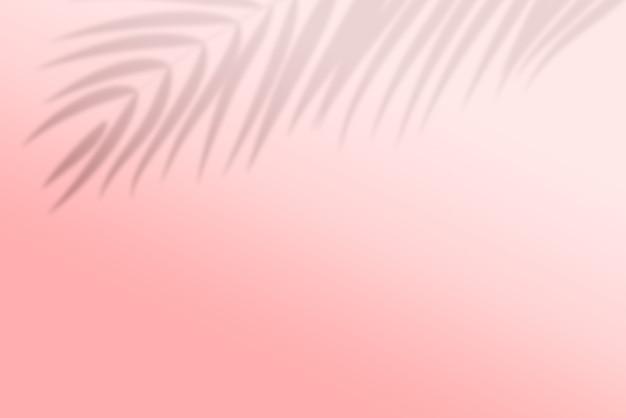 ヤシの葉の影の背景