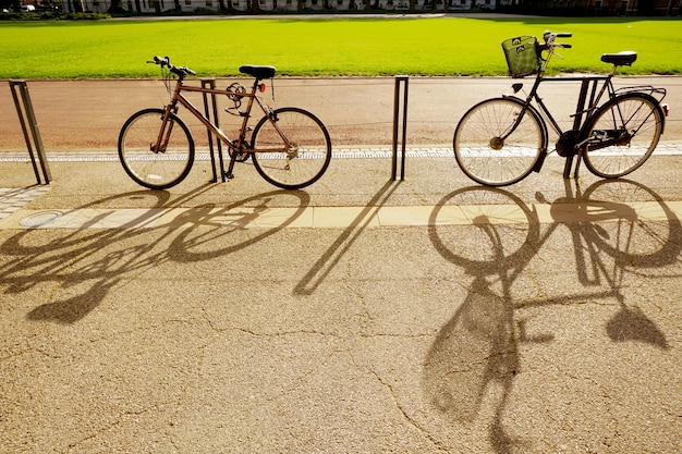 Shadow of the bicycles in the park