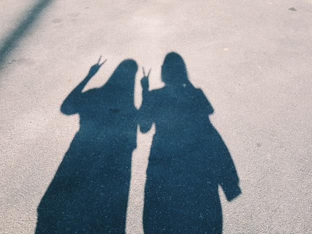 Теневые тела двух сестер или друзей путешествуют вместе и показывают боевой знак
