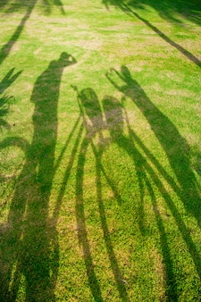 Shadow of a cyclist on grass