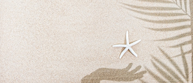 Shadow of female hand and palm tree leaves, starfish on sand, top view, copy space, banner