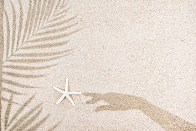 Shadow of female hand and palm tree leaves, starfish on sand