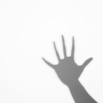 Shadow of human palm on white backdrop