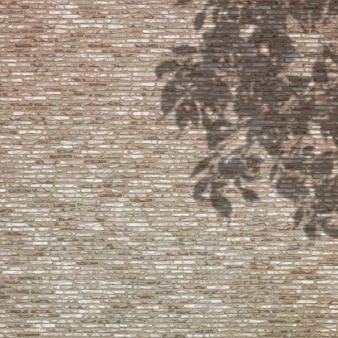 Ombra di foglie contro un muro di mattoni
