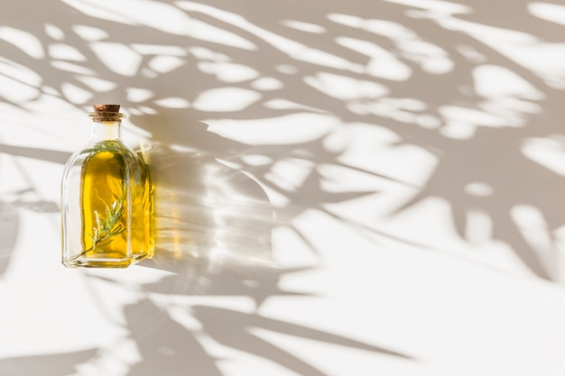 Shadow of leaves on closed olive bottle over the white backdrop
