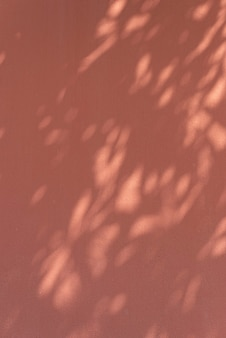 Shadow of leaves on an orange wall