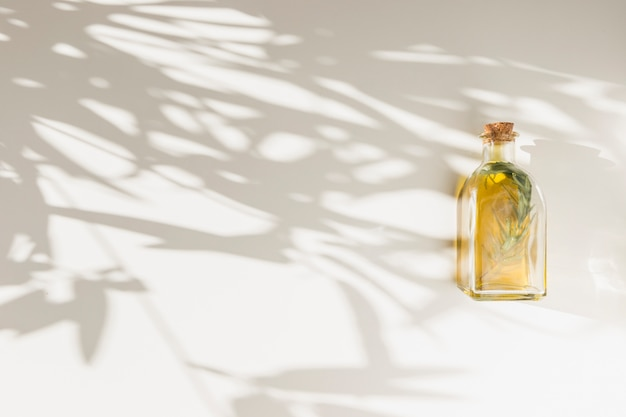 Shadow of leaves on wall with closed olive oil bottle