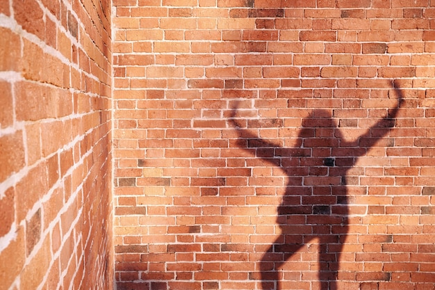 Shadow of a man on a brick wall background.
