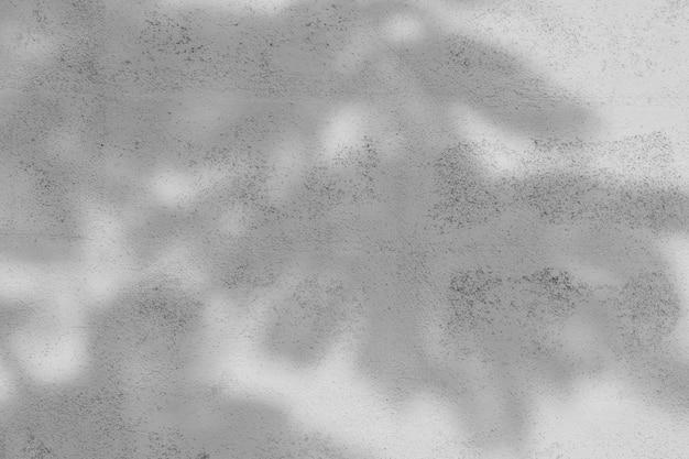 白いセメントの壁に枝と葉の影
