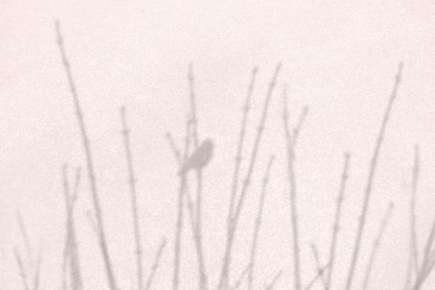 Тень сухой ветки дерева с птицей на естественном бежевом фоне