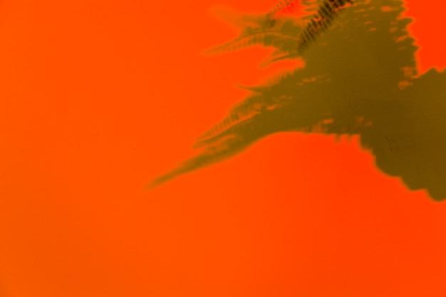 オレンジ色の背景上の葉の影
