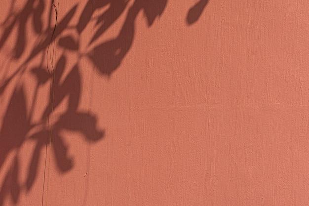 オレンジ色の壁に葉の影