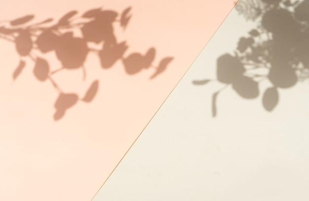 벽에 나뭇잎의 그림자, 여름 휴식 배경