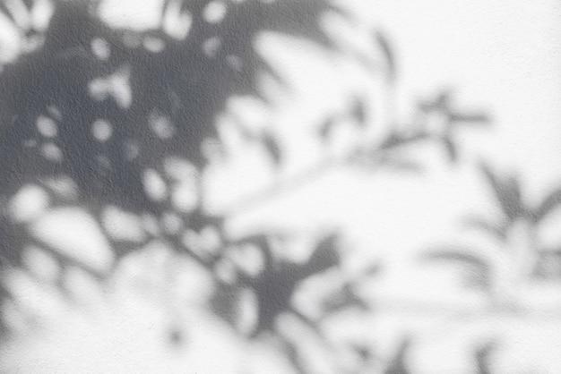 흰 벽에 나뭇잎의 그림자입니다. 오버레이 효과 사진 개념