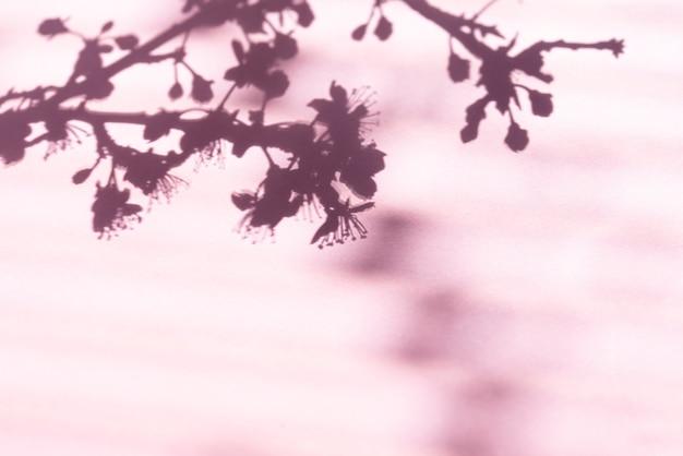 Тень дерева сквозь жалюзи