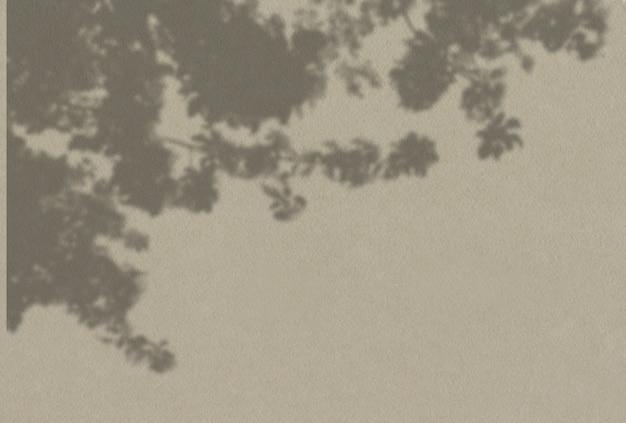 나무의 그림자 잎 평면도