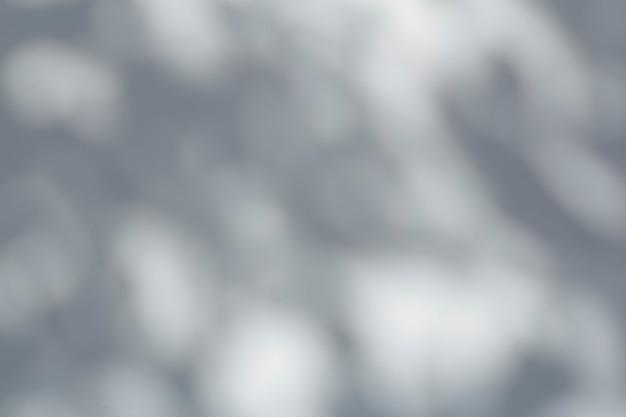 햇빛에 흰 벽에 나무 잎과 열대 가지의 사진 그림자에 대한 그림자 오버레이 효과 고품질 사진