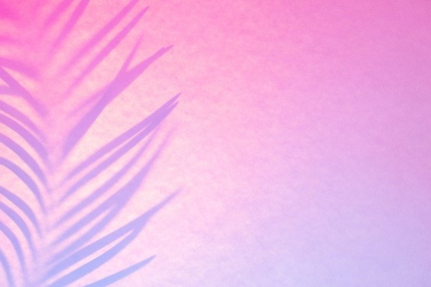 Shadow of palm leaf in trendy duotone backlight. abstract background in pink lilac neon colors.