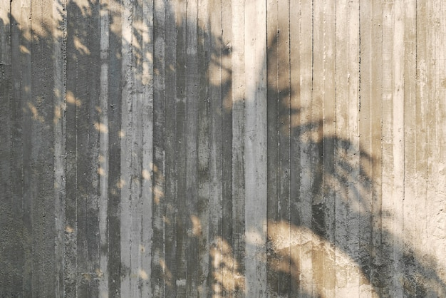 Shadow of tree on raw concrete wall with wooden form work texture