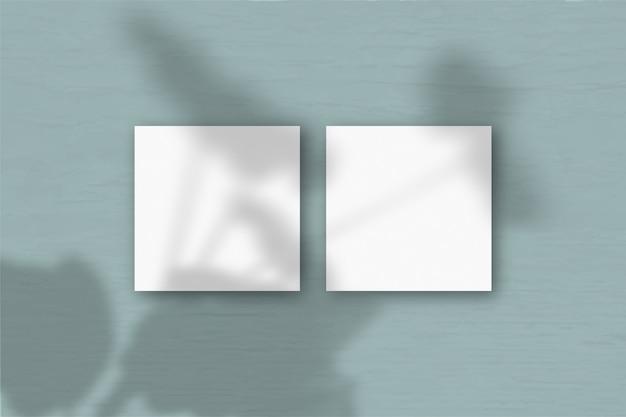 흰색 질감 종이의 여러 가로 및 세로 시트에 이국적인 식물의 그림자