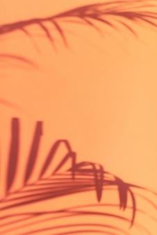熱帯パームの影はパステル調のピンクの壁の背景に残します。