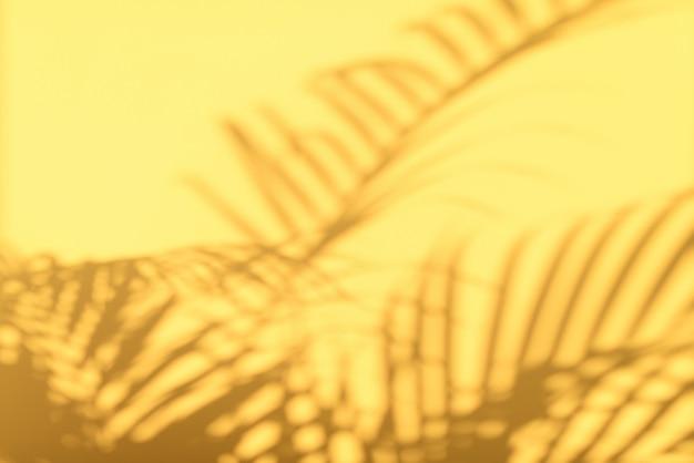 熱帯パームの影はパステル調の黄色の壁の背景に残します。