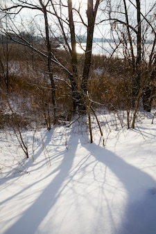 Shadows of the trees fall on the big deep snow drifts
