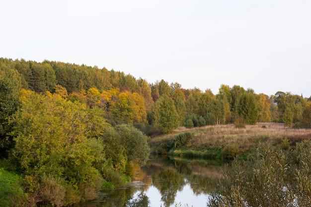 물이 매우 맑은 호수 한가운데 가을에 잎이 노랗게 변하는 그늘진 나무