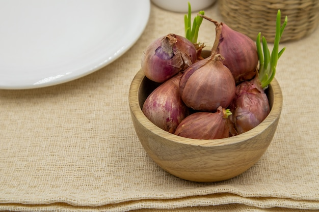 Shallots with sapling sprouted in a white dish