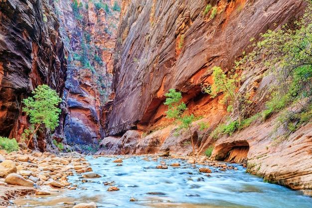 ザイオン国立公園の有名なバージンリバーナロウズの浅い急流-ユタ州