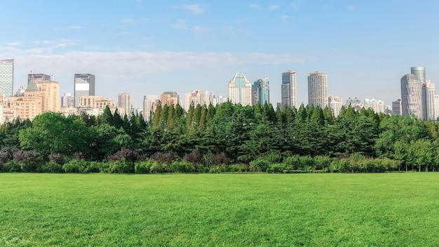 Shanghai bund and park woods