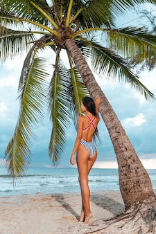 Shapely asian girl with shiny skin posing at exotic resort after sunbathing. sensual brunette woman in trendy bikini standing near palm tree. summer vacation
