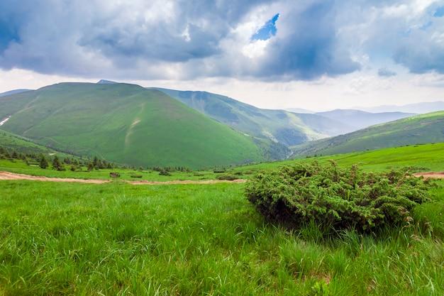 シャープな緑の山頂とドラマチックな雲の景観を持つ空