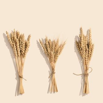 小麦の耳の束は、セットの帆のシャンパン色の背景にクローズアップします。天然穀物植物、収穫時期の概念。フラットレイ