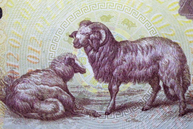 Sheep from chinese money