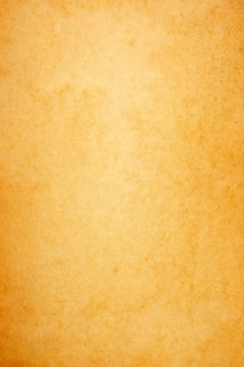 Sheet of brown paper texture