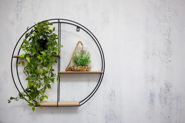 복사 공간이 있는 회색 콘크리트 벽 배경 위에 화초가 있는 선반
