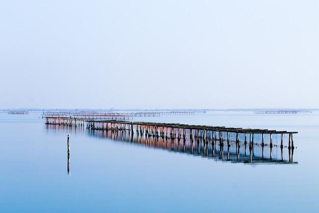 イタリアのポー川ラグーンからの貝類養殖。スカルドヴァリビーチ。イタリアの田園風景