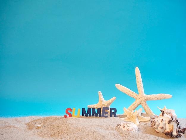 Shells on beach, blue background.