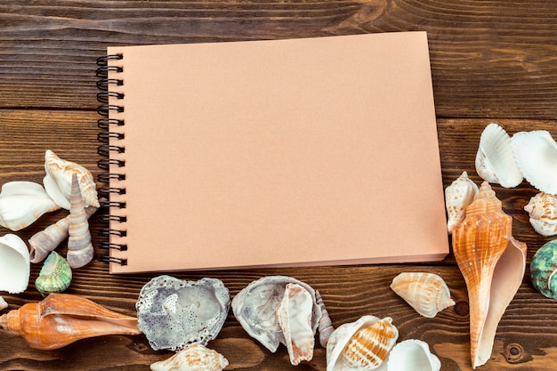 Shells and notepad on wooden table.