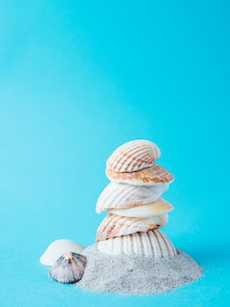 Shells on top of sand, isolated on blue background