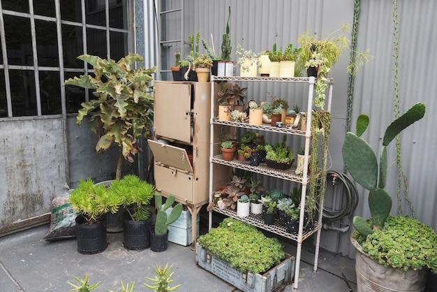 Shelves full of flowerpots