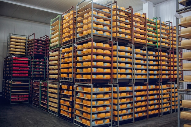 Shelves with cheese factory