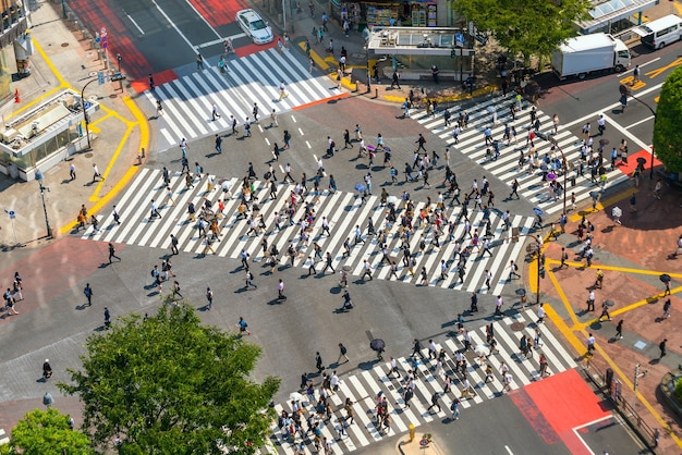 Shibuya crossing from top view day time in tokyo, japan