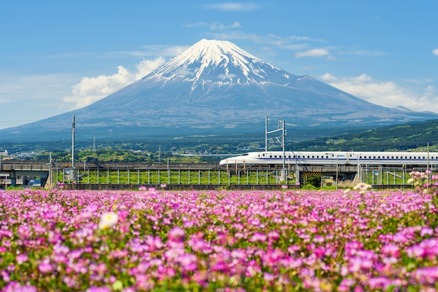 Shinkansen bullet train at mountain fuji