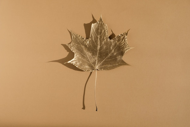 Shiny golden leaf on nude color background. flat lay, top view. minimal autumn composition concept.