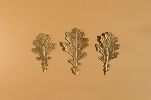 光沢のあるゴールデンオークの葉がヌードカラーの背景に並んでいます。フラットレイ、トップビューの最小限の秋の構成の概念。続けて。