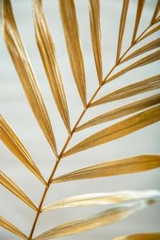 밝은 흰색 여름 배경에 빛나는 황금색 야자수 잎 질감. 럭셔리 열대 자연 레이아웃입니다.